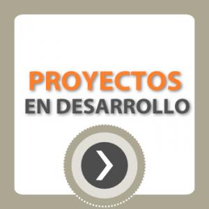 IDET banner Proyectos en desarrollo